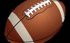 NFL weekly pick: Week Eleven