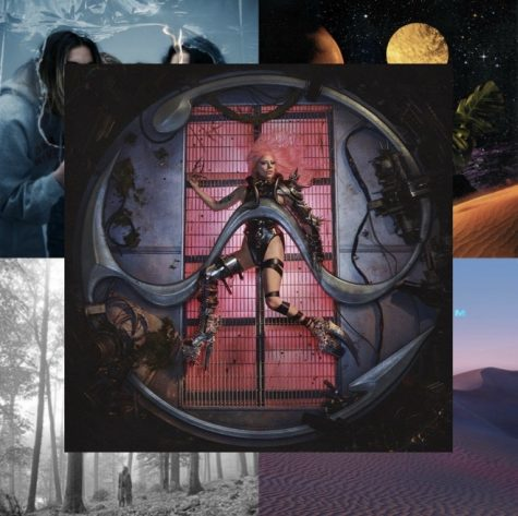 Summer 2020: In Review: Part Two