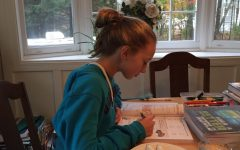 Young Hagymas diligently works on a math assignment at the kitchen table within her home. Until her senior year of high school, she had begun almost every day alike to this one.